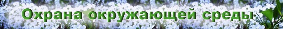 Interconsu.narod.coml - Международное сотрудничество,окружающая среда,экономика,образование